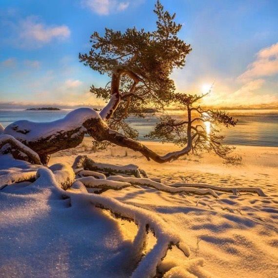 Снежный уик-энд